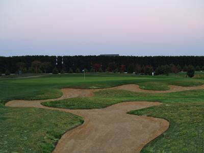 Blue Heron Golf Course #16 Hole Green